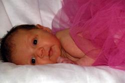 Births: Mayci Grey Zimmerle