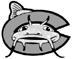 Carolina Mudcats sweep series at home