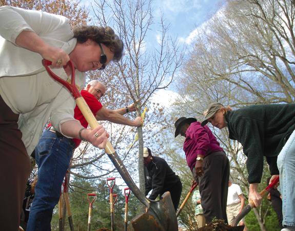 Town celebrates Arbor Day
