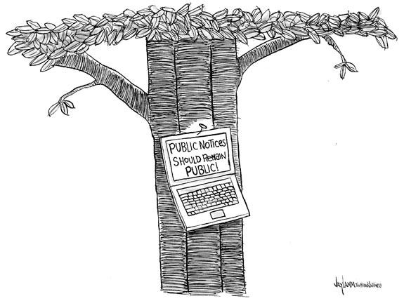 Editorial Cartoon: Oracle
