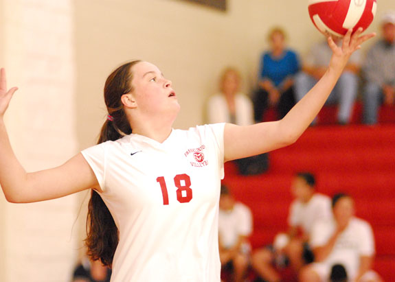 County stars on All-NCC volleyball squad