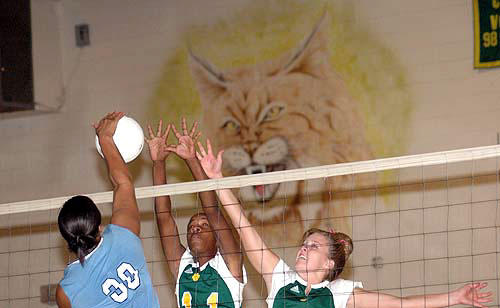 Ladycats fall in 3 against Lady Raiders