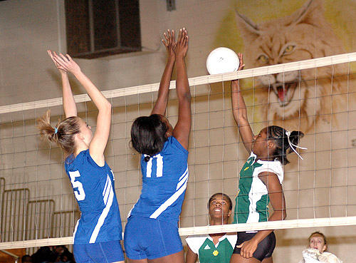 Durham Arts does in Ladycats in four games