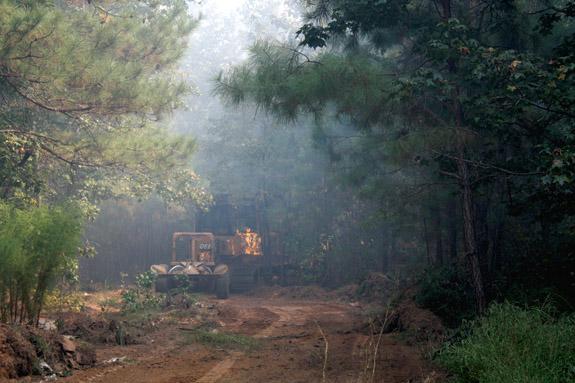 Fire burns 11.9 acres