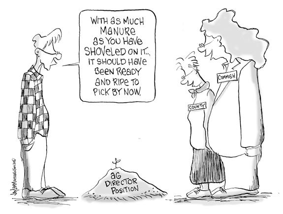 Editorial Cartoon: Cow Patties