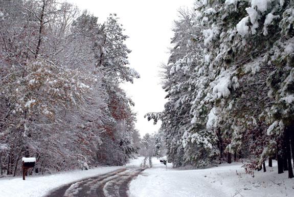 Snow pics, 1
