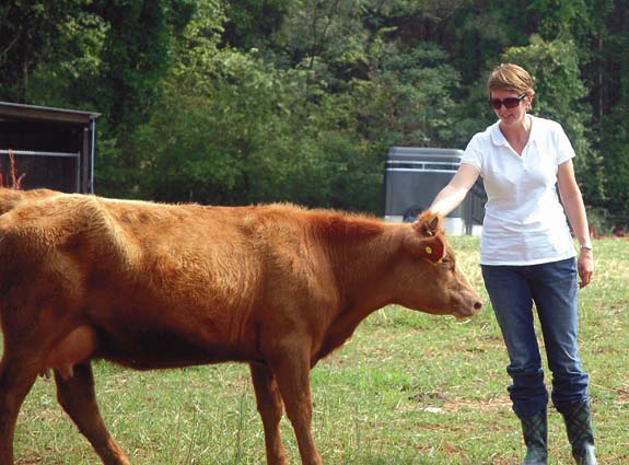 Tour highlights beef industry