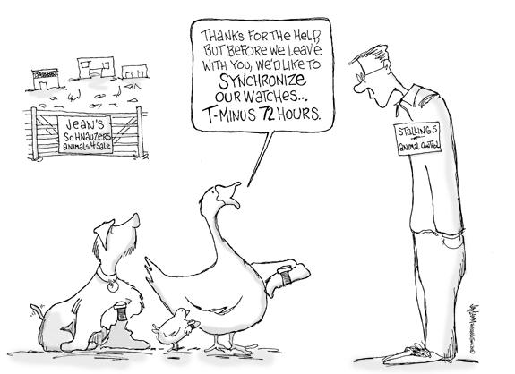 Editorial Cartoon: Duck Soup