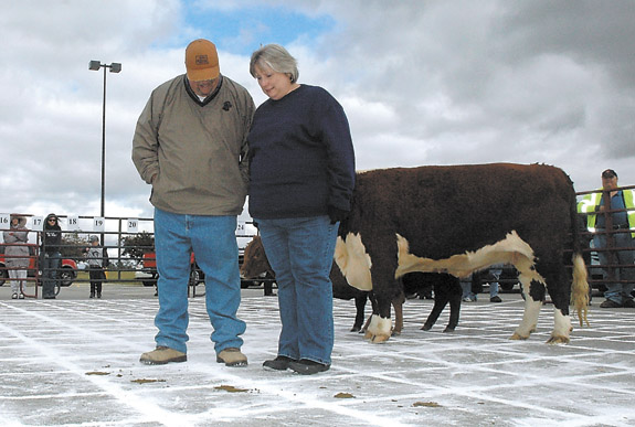 Cow Chip Bingo raises moo-la for United Way teachers' grants