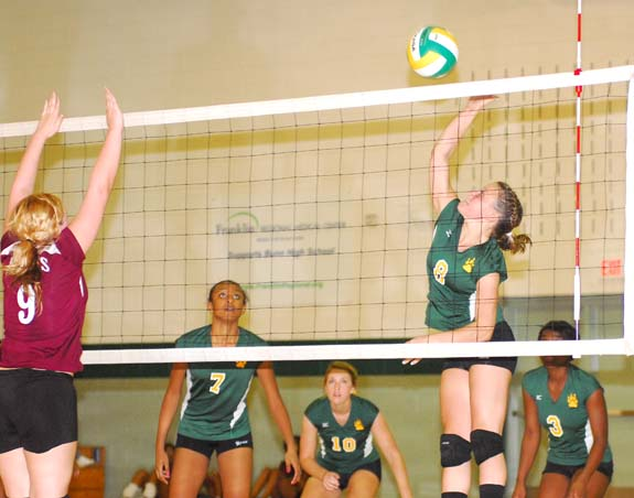 Ladycats go 3-0 on court for week