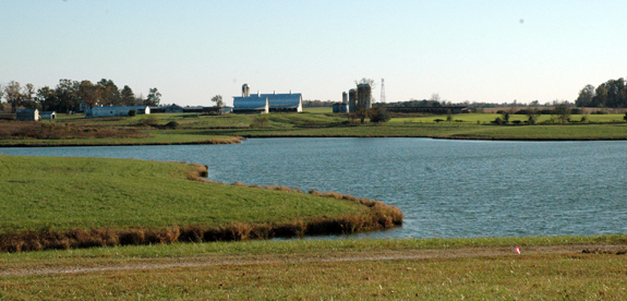 <i>'Family decision' prompts Harris Farm sale</i>