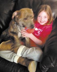 Medical melee: Woman tased, dog killed by deputy