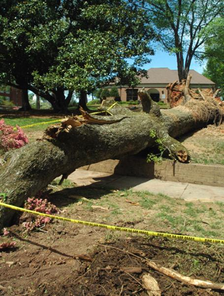Breaking News: Hail, wind and rain rush through Franklin County