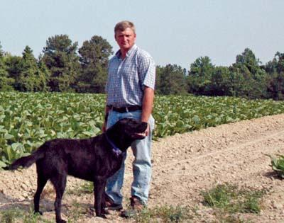 From dusty tobacco rows to flowering gardens, it's dry